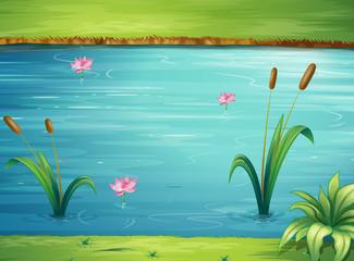 Canvas Prints River, lake A river and a beautiful landscape