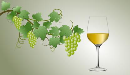 Weißwein im Glas mit Trauben