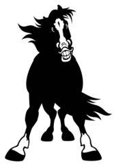 cartoon horse black white