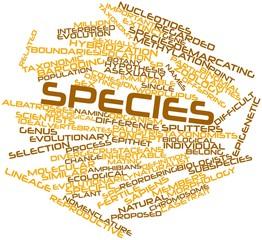 Word cloud for Species