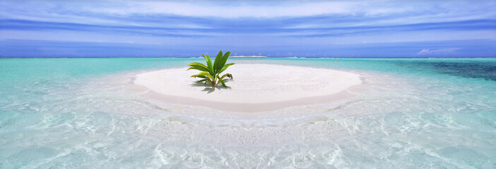 In de dag Eiland Tropical island with palm