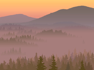 Illustration of valley with coniferous wood.