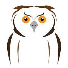 vector brown owl on a white background
