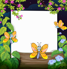 Butterflies and a white board