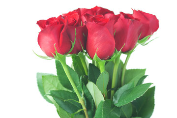 beautiful bouquet of red roses isolated on white