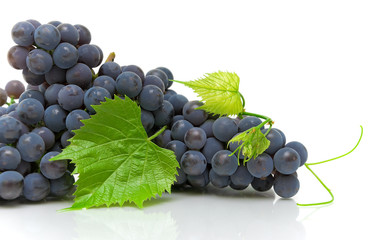 grapes and leaves on a white background close-up