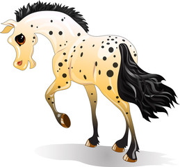 Cartoon spotted horse