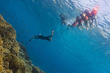 Free diving at Similan island