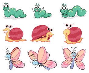 A caterpillar, butterfly and a snail