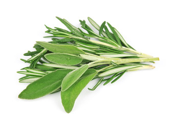 Twig of rosemary and sage