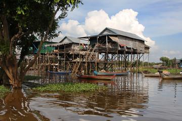Maisons sur pilotis dans la mangrove