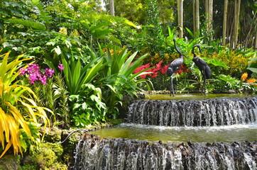 Foto op Plexiglas Singapore Singapore Botanic Gardens