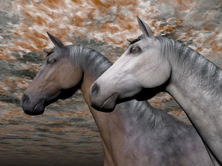 Portrait of two horses - 3D render