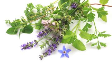 Aromatic fresh herbs