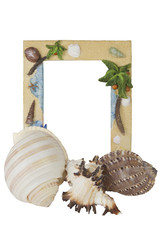 A tropical vacation themed picture frame