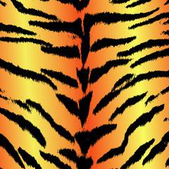 Tiger ~ Panthera tigris ~ Fell ~ Muster ~ Haut