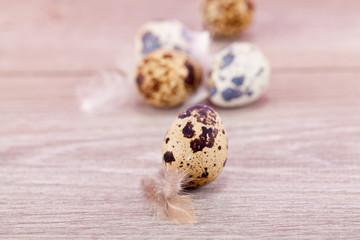 Traditionelle Oster Dekoration mit Wachtel Eiern und Federn auf
