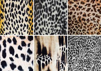 Animal pattern collage