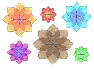 colorful flowers illustration