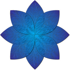 blue flower illustration
