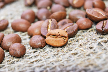 roasted coffee beans on sacking