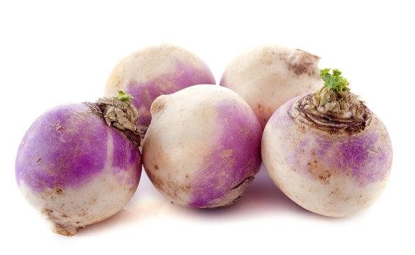 freshly turnips