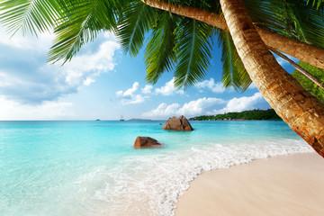 Obraz Anse Lazio beach on Praslin island in Seychelles - fototapety do salonu