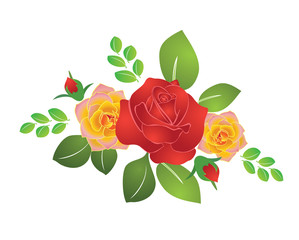 bouquet of summer roses - vector