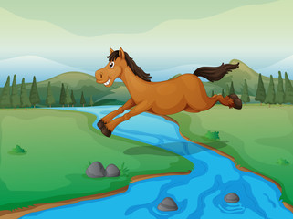 Horse crossing the river