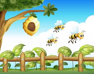 The three bees
