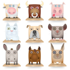 Domestic animals icon set