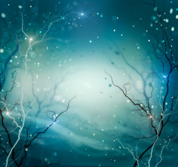 Winter Nature Abstract Background. Fantasy Backdrop