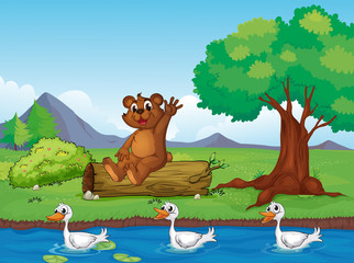 Wall Murals River, lake A smiling bear and ducks