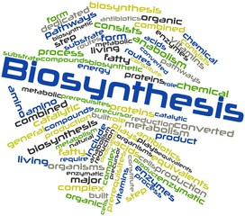 Word cloud for Biosynthesis