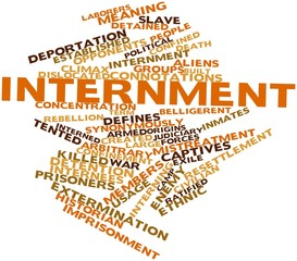 Word cloud for Internment