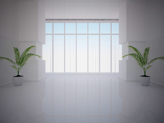 white empty interior with plants