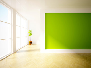 empty interior with green wall and plant