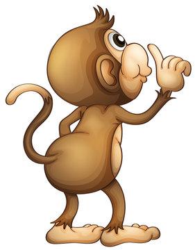 A monkey's back