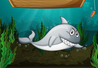 Wall Murals Submarine Shark fish and a bench