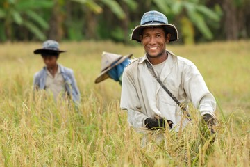 Happy thai farmer