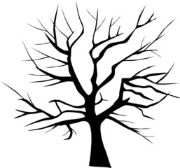 Baum Silhouette Winter