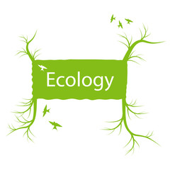 Ecology banner with green tree and roots vector