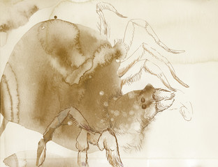 Spider - from watercolor accidental stains. Full sized drawing