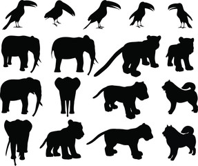 Zoo animals collection