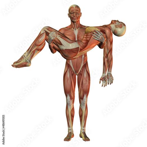 Größere Brüste durch Muskelaufbau und Krafttraining