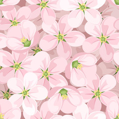 Seamless background with apple blossoms. Vector illustration.