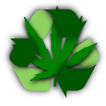 Chanvre industriel écologique