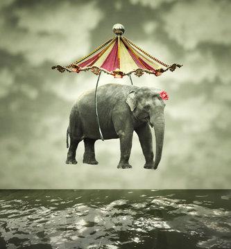 Fanciful elephant
