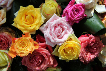 Multicolored rose bouquet