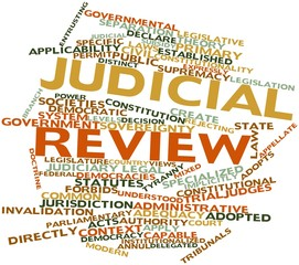 Word cloud for Judicial review